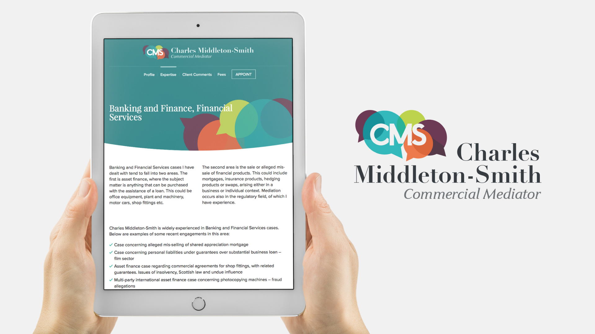Commercial mediator logo and website design